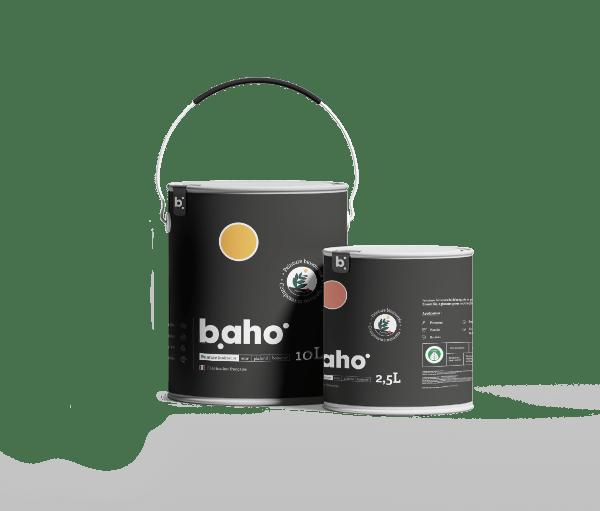 Packaging-peinture-baho